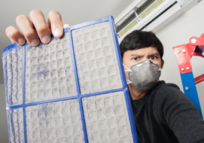 MOLD & MEDLOW TREATMENT